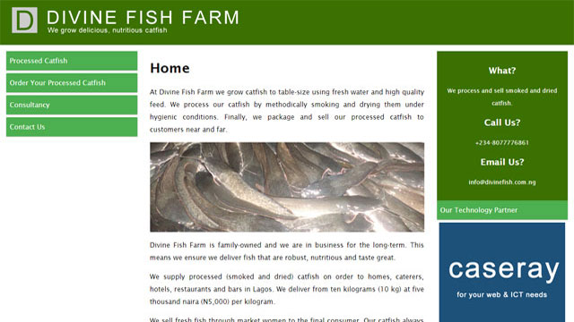 Divine Fish Farm Lagos website designed and developed by Caseray Solutions