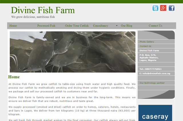 Divine Fish Farm website design by Caseray Solutions website design company Lagos, Nigeria